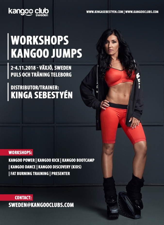 workshop Sweden